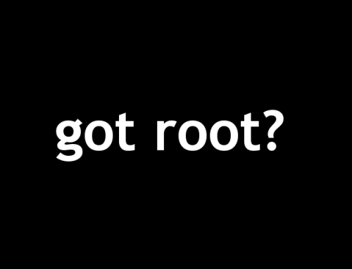 7002 Linux Security: Got Root – Hacking Lab Write-Up